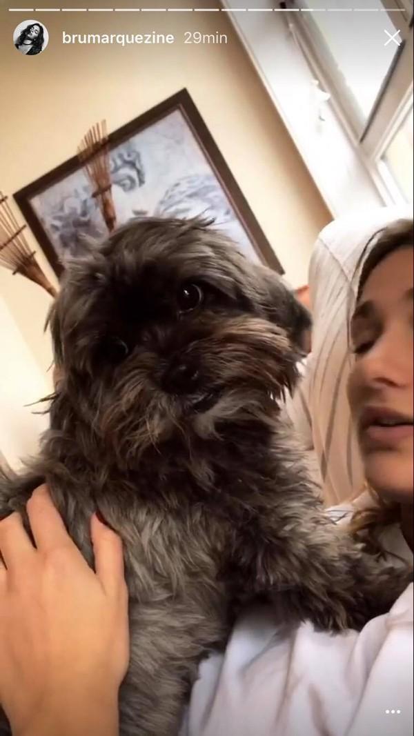 Cadela Ursa ganha carícias de Sasha (Foto: Reprodução / Instagram)