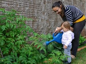 Professores também levaram mudas para plantar em casa (Foto: Graziela Rezende/G1 MS)