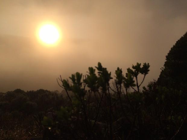 Há previsão de -6ºC em cidades da Serra catarinense no sábado (12) (Foto: Larissa Vier/RBS TV)