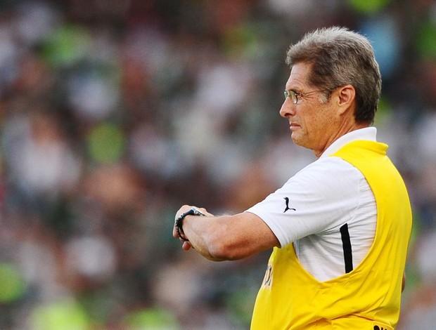 Oswaldo Botafogo Palmeiras (Foto: Marcos Ribolli / Globoesporte.com)