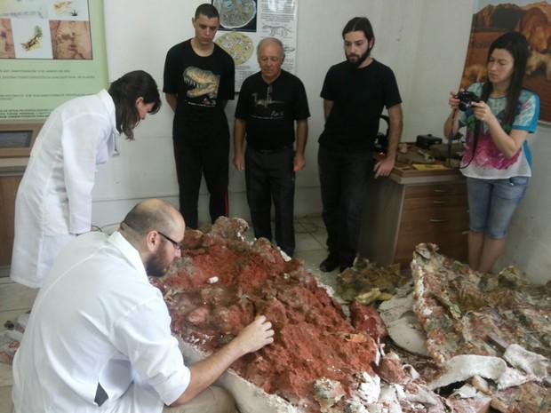 Pesquisadores dizem que fóssil de 230 milhões de anos só será exposto em 2015 (Foto: Tiago Guedes/ RBS TV)
