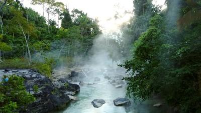 Amazônia peruana (Foto: rede globo)