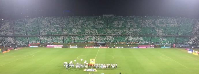 """mosaico da torcida do atlético nacional diz """"vamo, vamo chape"""" (Foto: Leonardo Lourenço / GloboEsporte.com)"""