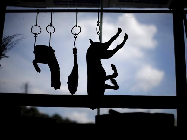 Corpos de cachorros que serão consumidos em festival chinês (Foto: Reuters/Kim Kyung-Hoon)