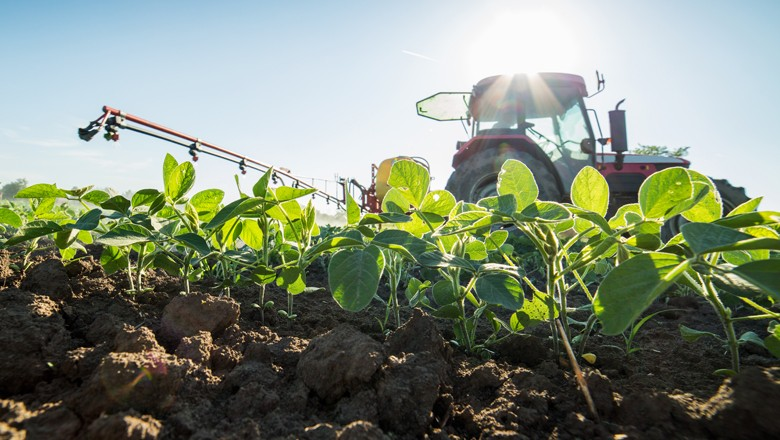 De acordo com a Companhia Nacional de Abastecimento (Conab), a produção de soja na safra 2016/2017 deve ter alta de 14,2 milhões de toneladas em relação à safra anterior (Foto: Thinkstock)