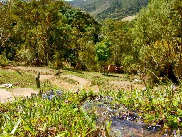 aiuruoca (Foto: Reprodução EPTV)
