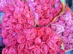 Tons de rosa também são muito procurados represnetando romantismo da data (Foto: Suzana Barrozo/InterTV)