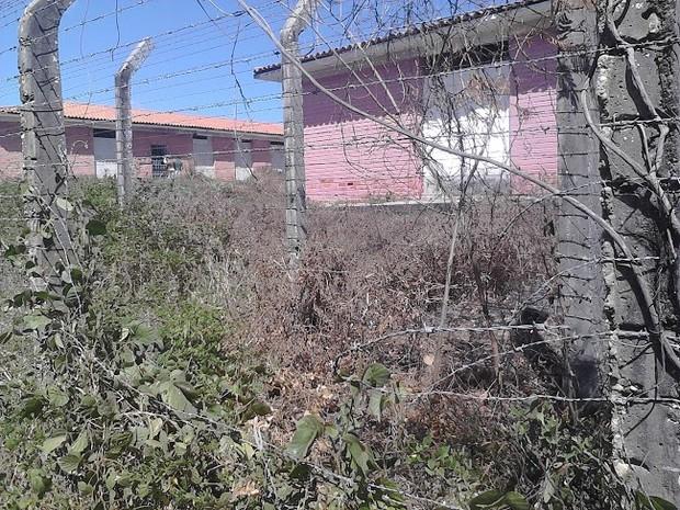 Presos passaram pela cerca de arame para cometerem assaltos (Foto: Divulgação/Sinpoljuspi)