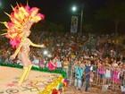 'Bosque Folia' espera reunir 4 mil brincantes em Rio Branco