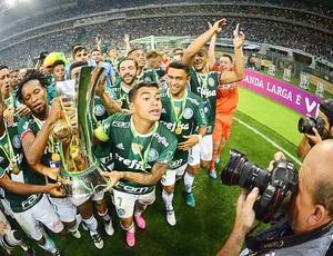 Palmeiras x Chapecoense Dudu taça