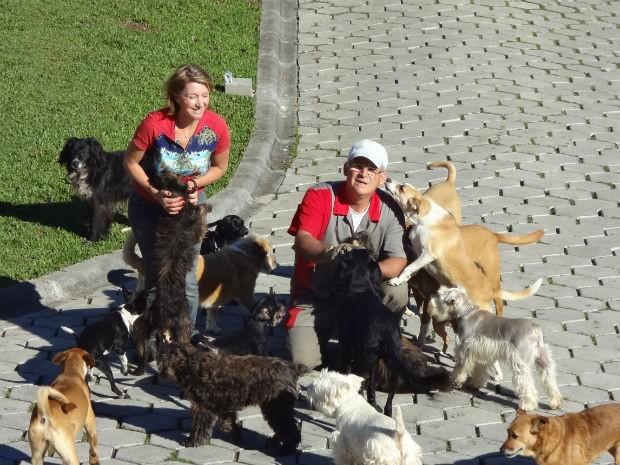 Todos os cães tem nome e vivem soltos em três espaços diferentes na chácara (Foto: Adriana Justi / G1)