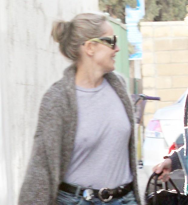 Sharon Stone (Foto: X17/Agência)