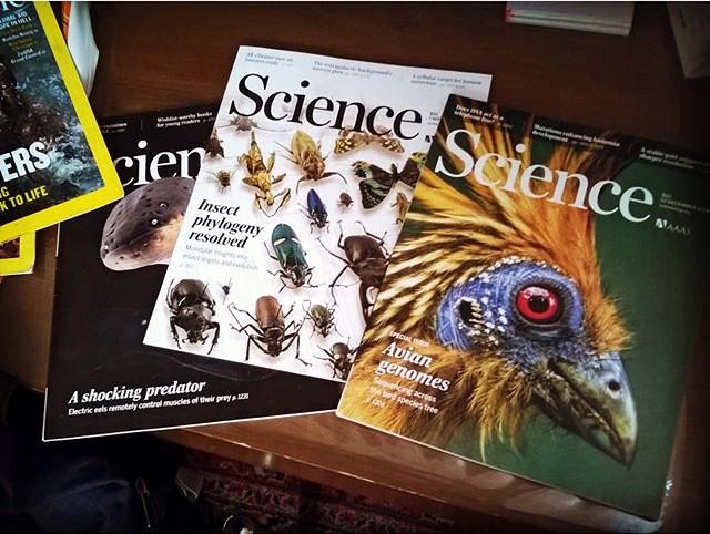 Capas da Science - os periódicos científicos são importantes para o trabalho dos pesquisadores. Seus preços elevados geram protestos (Foto: Reprodução/ Instagram)