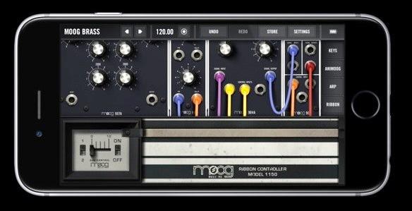 Moog D
