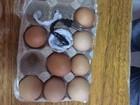 Mulher é detida ao entrar em cadeia do RN com carregador dentro de ovo