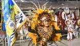 Peruche homenageia o samba no seu retorno ao Grupo Especial de SP (Flavio Moraes/ G1)