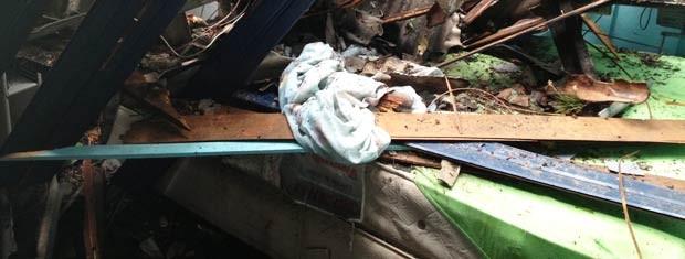 Árvore parou em cima da cama do casal, que teve apenas arranhões (Foto: Luciane Kohlmann/RBS TV)