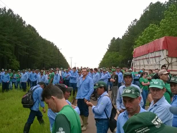 Segundo a Araupel, 1,2 mil funcionários aderiram à paralisação em protesto contra as invasões de terra da empresa; grupo está sem trabalhar desde o dia 5 (Foto: Araupel / Divulgação)