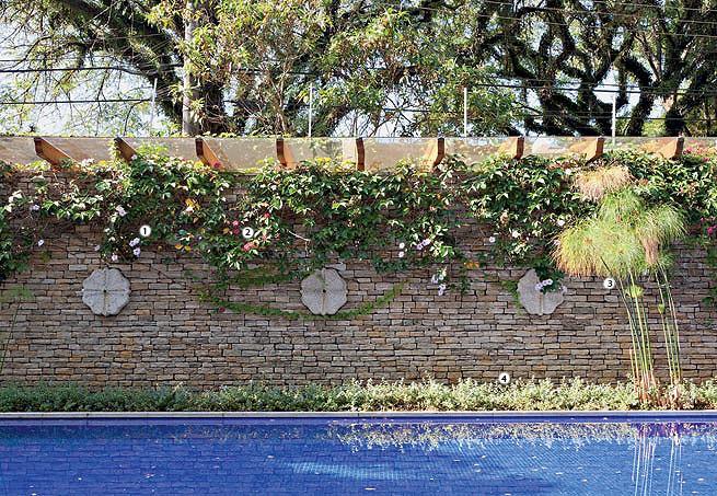 jardim vertical no muro : jardim vertical no muro:ECOLÓGICA – POR UM AMBIENTE INTEIRO: JARDIM VERTICAL : PAREDES VIVAS