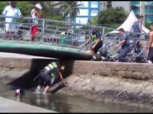 Guarda e jovem caíram no canal durante abordagem  (Foto: Reprodução )