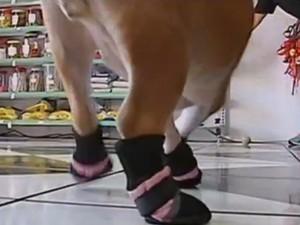 Acessórios como sapatos também ajuda a amenizar o calor (Foto: Reprodução/TV TEM)