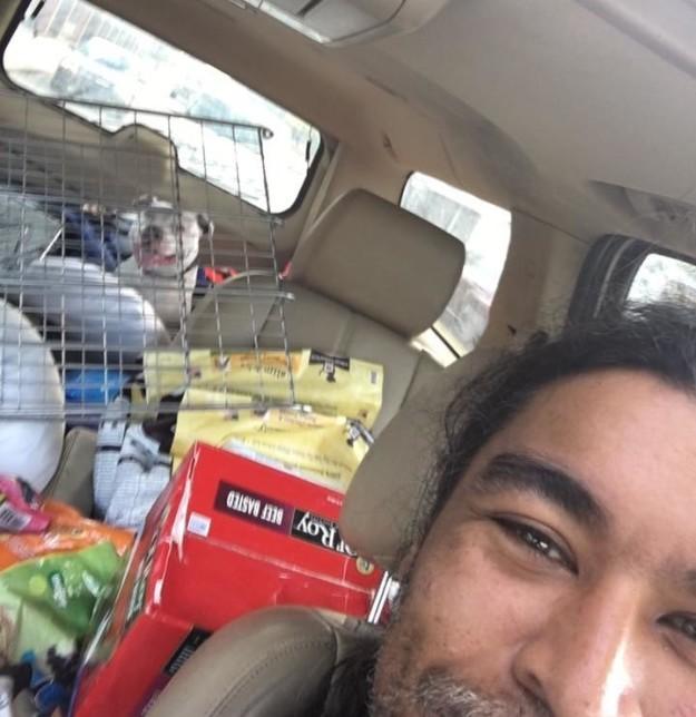 Boo é finalmente levado a abrigo de Detroit