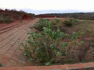 Obras do sistema de esgotamento sanitário de Princesa Isabel estão paradas desde 2012 (Foto: Reprodução/TV Cabo Branco)
