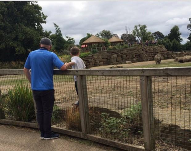 Menino estava na área dos rinocerontes acompanhado de um adulto, fora da cerca (Foto: Reprodução/Internet)