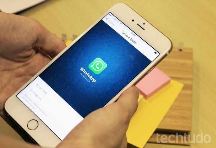 Confira dicas para organizar o WhatsApp no Android e iPhone (Foto: Anna Kellen Bull/TechTudo)