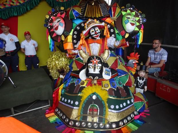 Para participar do 'Concurso dos Papangus' gastou R$ 1 mil para fazer a fantasia (Foto: Joalline Nascimento/ G1)