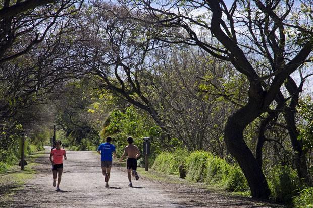 A Reserva Ecológica Costanera Sur oferece quilômetros de trilhas para quem mora ou trabalha em Puerto Madero (Foto: Haroldo Castro/Época)