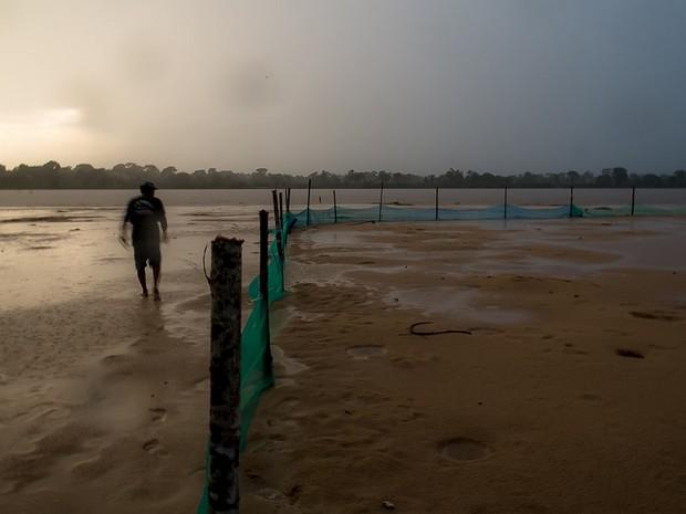 Áreas de desova são cercados para proteger os ovos de tartarugas (Foto: José Medeiros/ Gcom-MT)