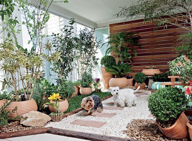Mesmo morando em apartamento, os cães Billy e Burtikus podem brincar na grama – e também usá-la para fazer as necessidades. Na varanda, a paisagista Ivani Kubo idealizou uma contenção de cruzetas e, dentro dela, colocou uma camada de argila, outra de mant (Foto: Ilana Bar/Casa e Jardim)