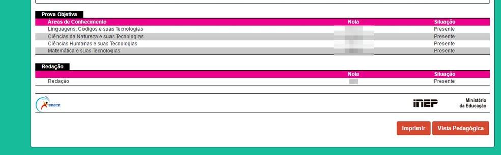 Participante deve procurar botão no fim da página: vista pedagógica. (Foto: Reprodução/Inep)
