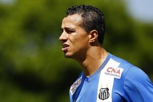Leandro Damião Santos (Foto: Ricardo Saibun / Divulgação Santos FC)