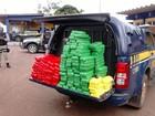 PRF apreende 357 quilos de cocaína em rodovia federal de Mato Grosso