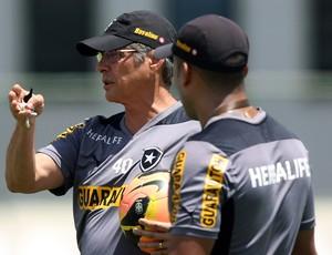 Oswaldo de Oliveira treino Botafogo (Foto: Satiro Sodré)