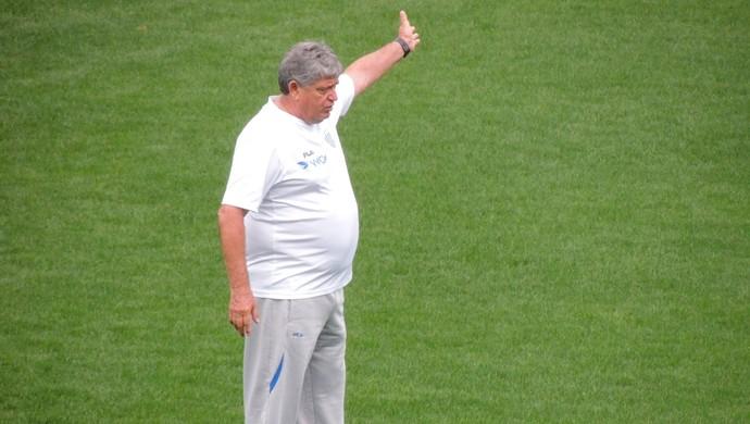Geninho Avaí (Foto: Diego Madruga)