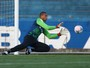 Nas mos de Dida: Grmio aposta no retrospecto do goleiro por vaga