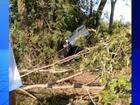 Médico morre ao bater caminhonete em árvore em rodovia de Auriflama