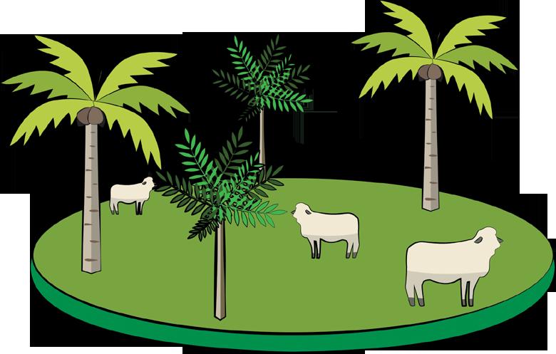 ilpf-integração-ilustrações (Foto: Felipe Yatabe/Ed. Globo)