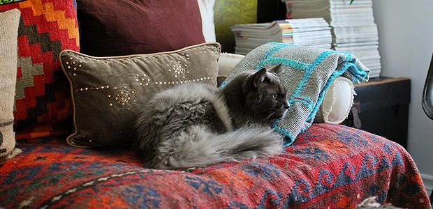 Kim tem vários gatos em casa. No blog, ela dedica um post por semana aos animais (Foto: Desire to Inspire)