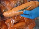 Veja droga escondida em cenouras e mais disfarces bizarros do tráfico