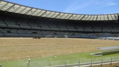 Depois de problemas no sistema de drenagem, Mineirão recebe novo gramado (Foto: Leandro Máximo)