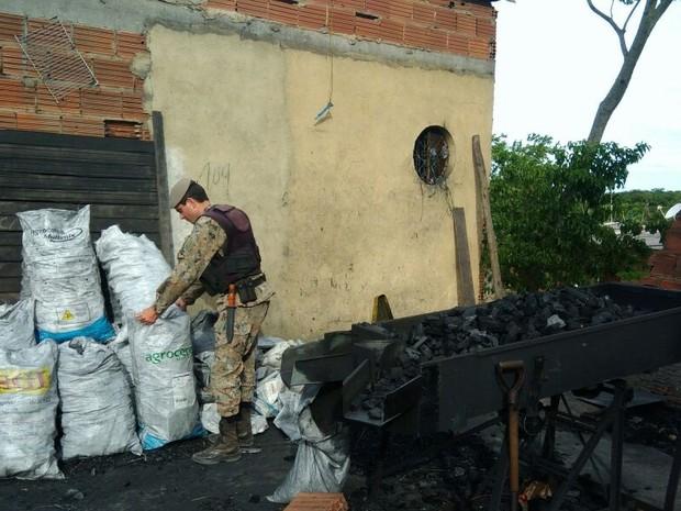 Carvão era armazenado sem licença (Foto: Polícia Ambiental/Divulgação)