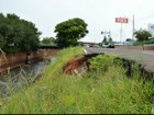 Prefeitura de Campo Grande quer licitar em 90 dias obras contra erosão