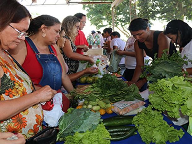 Campus da UFPA no Guamá recebe Feira da Agricultura Familiar (Foto: Proex/Divulgação)
