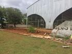 Muro de escola municipal desaba após chuvas em Palmas