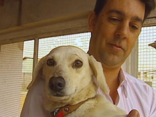 Adoção de animais é um dos temas que serão abordados no evento  (Foto: reprodução/TV Tem)