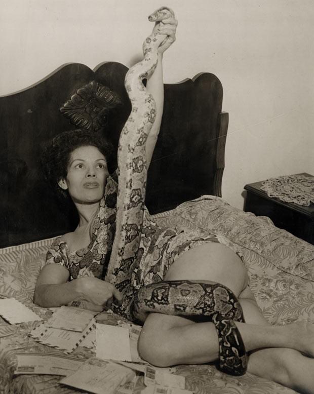A faquiresa Suzy King exibe-se com uma das cobras de suas apresentações ao lado de cartas dos fãs (Foto: Divulgação)